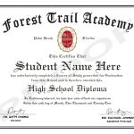 American High School Diploma Programs For International Students 14